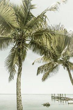 FLORIDA KEYS Traumhafter Ort | Vintage von Melanie Viola