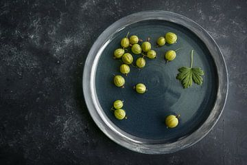 Einige frisch geerntete Bio-Stachelbeeren auf einer dunkelblauen Platte und dunklem Hintergrund, Kop