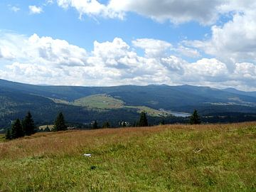 Heuvels in Roemenië  von Wilma Rigo