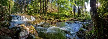 Idyllische stroom die door het bos stroomt van Silvio Schoisswohl