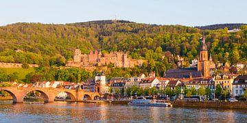 Oude brug en kasteel in Heidelberg van Werner Dieterich