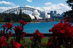 Sydney Operahuis vanuit Botanische tuinen van Tessa Louwerens
