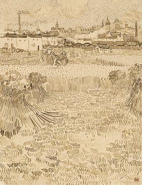 Vincent van Gogh. Blick auf das Maisfeld in Arles