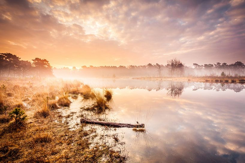 Perfect Sunrise van Juul Hekkens