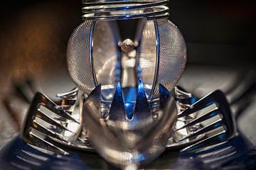 Alien Insect van Rob Boon
