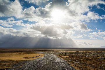 Hvergi (IJslands voor: onbekende bestemming) van Aisja Aalbers