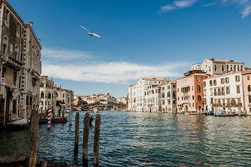 Het kleurrijke Canal Grande in Venetië, Italie van Art Shop West