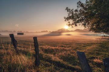 Vroege ochtendmist in de rioolboerderij van Steffen Peters
