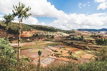 Landschaft mit Reisterrassen in Madagaskar von Expeditie Aardbol