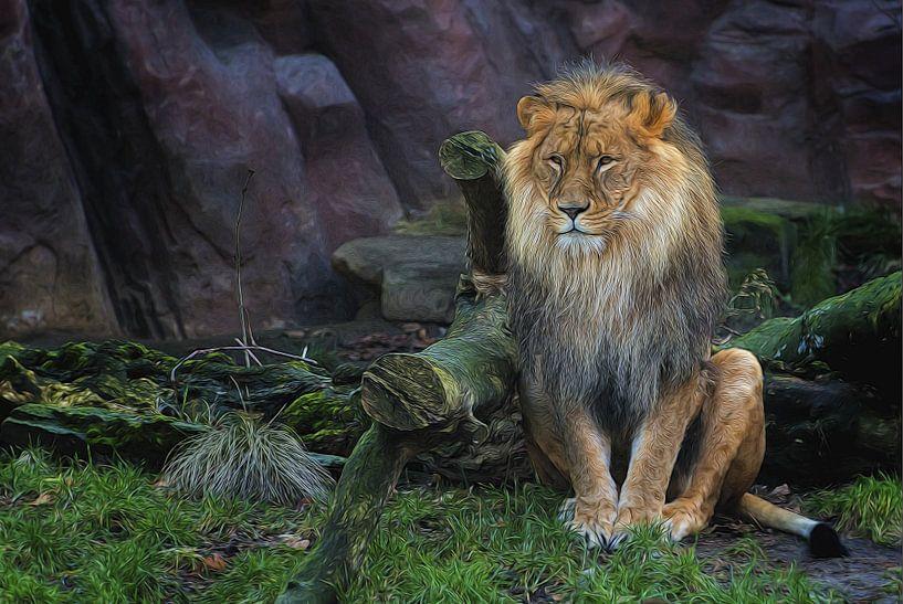 De koning van de wildernis  van Tejo Coen