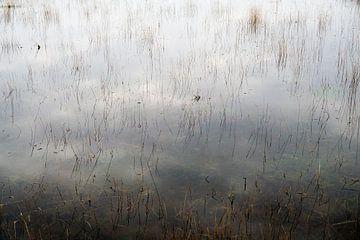 Onder water van Elke van Hessem