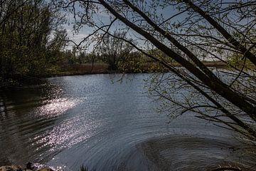 Biesboschsee von Carin IJpelaar