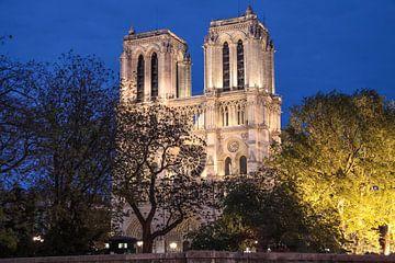 Kathedraal Notre Dame de Paris in de avond, Parijs van Christian Müringer