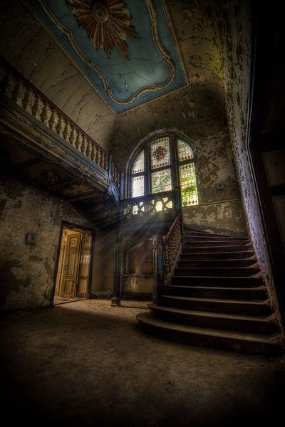 Dark Decay van Henny Reumerman