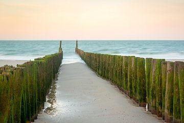 Strandpalen tijdens zonsopkomst van Evert Jan Kip