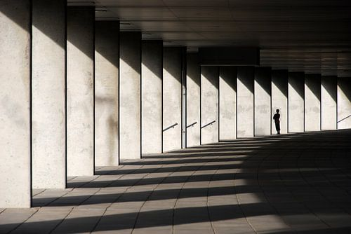 light&shadow van