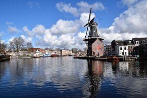 Molen de Adriaen in Haarlem