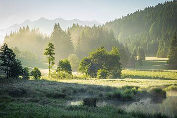 Sommer in den Alpen von Martin Wasilewski