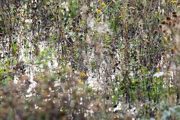 Flower Chaos van GerART Photography & Designs