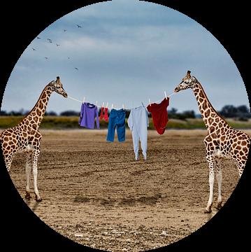 Het drogen van de was in Afrika van Ursula Di Chito
