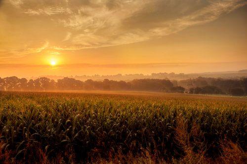 Mistige zonsopkomst in Zuid-Limburg van John Kreukniet