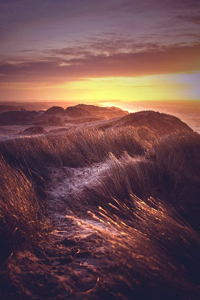 Vue sur les dunes du Danemark sur Florian Kunde