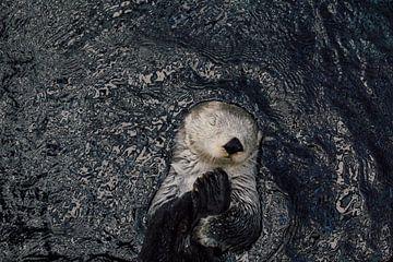 Zee-otter van Fardo Dopstra