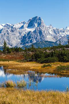 Veenpoel met bergspiegeling van Coen Weesjes