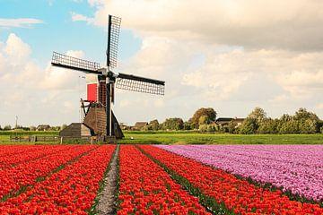 Een veld met bloeiende tulpen met op de achtergrond een molen en Hollandse wolken lucht sur Henk van den Brink
