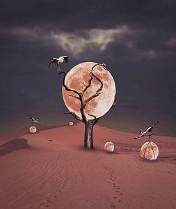Mondpflücken von Catherine Fortin