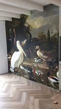 Photo de nos clients: Een pelikaan en ander gevogelte bij een waterbassin, 'Het drijvend veertje' sur Hollandse Meesters