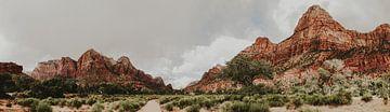 Zion National Park von Amber den Oudsten