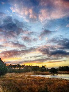 Prachtige zonsopgang met mooie kleuren in Nederland. van