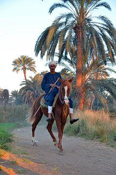 Ägyptischer Bauer zu Pferd von Ellinor Creation