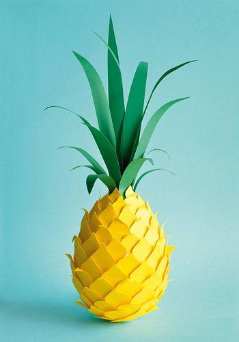 Ananas van Lonneke Leever