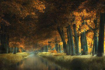 Evening Moods van Kees van Dongen