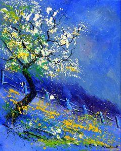 Blue spring von