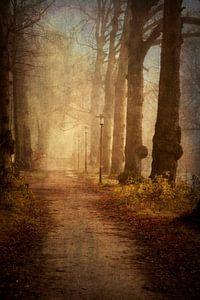 Fairytale van Simone Sterkenburg