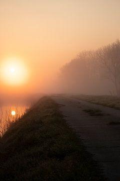 Misty morning 1 van Mirjam Duizendstra