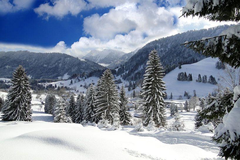 Winter in den Bergen van Renate Knapp