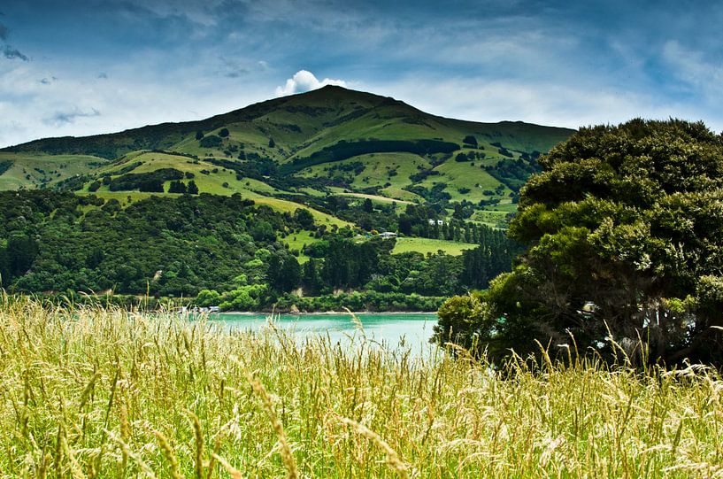 Banks Peninsula - Nieuw Zeeland van Ricardo Bouman