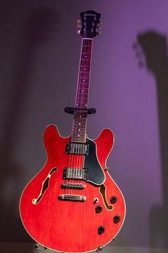 Elektrische gitaar van Antoon van Osch