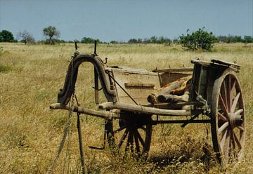 Landleven in Portugal. van Ineke de Rijk