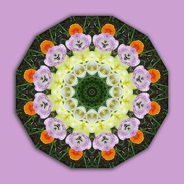 Blüten-Mandala, Tulpen van Barbara Hilmer-Schroeer