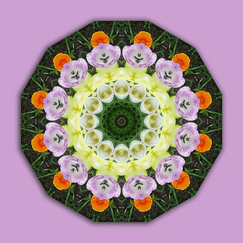 Blüten-Mandala, Tulpen