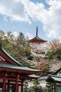 Pagode en tempels met kersenbloesems