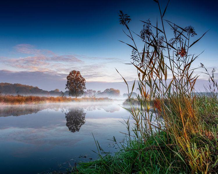 A simple sunday morning scene van Ruud Peters