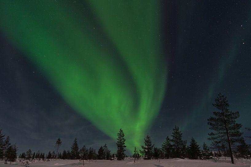 Polarlicht in Finnland Lappland 2020 von Robin van Maanen