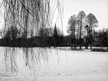 Amsterdam / winter in Vondelpark van Marianna Pobedimova
