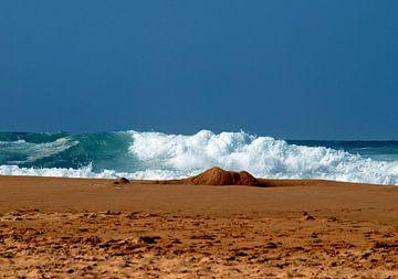 Witte golven van Ineke de Rijk